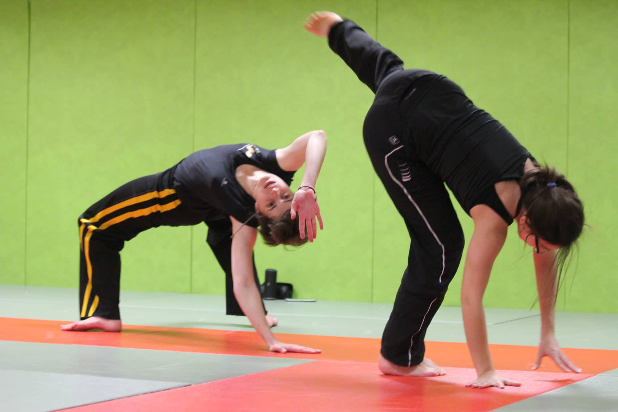 Cours de capoeira Regional